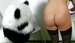 Super dainty tacky hottie riding long panda's kielbasa